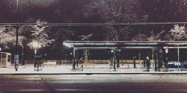 Schnee-Fotos.jpg