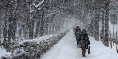 Schnee Kälte Bulgarien