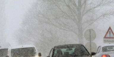 Schnee-LaLe_APA.jpg