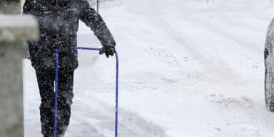 Schnee-Langenlabarn_APA.jpg