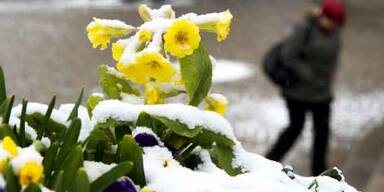 Schnee.2.jpg