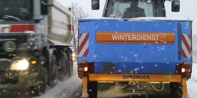 Schnee_APA6.jpg