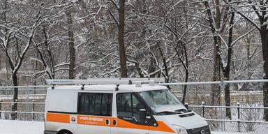 Schnee_Kronsteiner.jpg