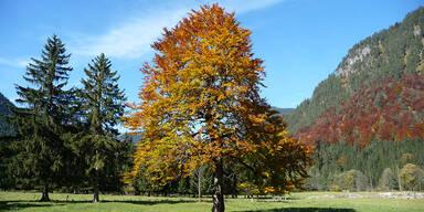 Achensee - Tirol-CH - Wetter.at - Slideshow - Karwendeltäler