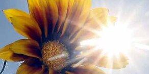 Sonne & 25 Grad! Traumwetter am Dienstag