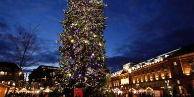Weihnachtsbaum Straßburg Strasbourg