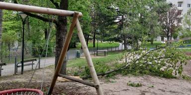 Sturm fegte mit 123,5 km/h über Wien