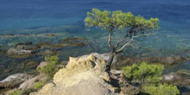Ad Dertour Mallorca