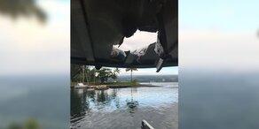 Irre: Lava-Bombe trifft Touristen-Boot - 23 Verletzte