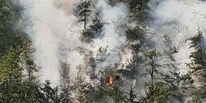 Waldbrand wütet am Hallstättersee