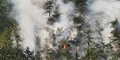 Waldbrand Hallstättersee