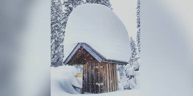 """""""Ein Meter Neuschnee"""": Fotos zeigen Schneemassen"""