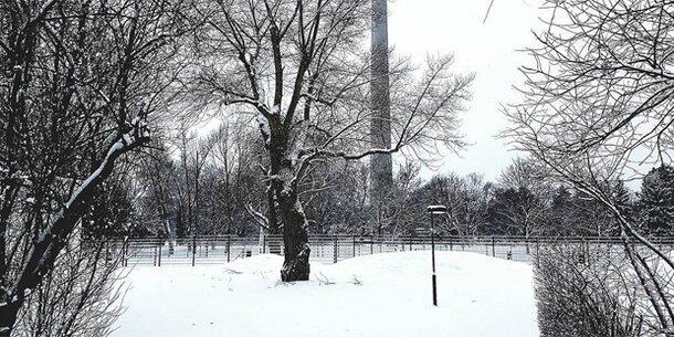 Endlich Schnee! Wien wird zum Winterwonderland