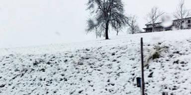 Wintereinbruch im Mühlviertel