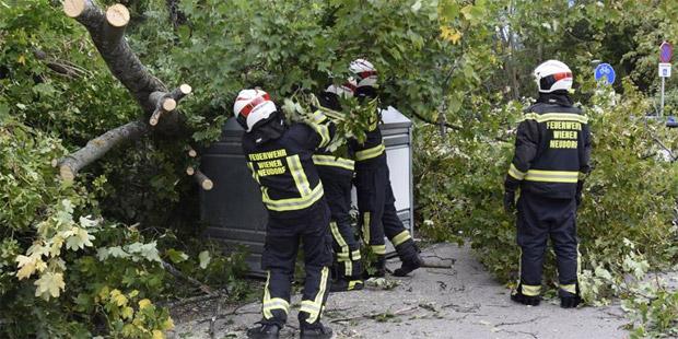 Sturm Wiener Neudorf