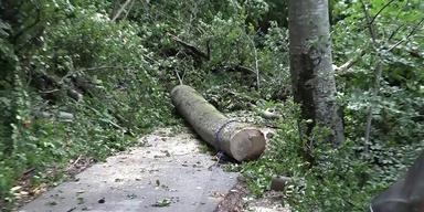 Unwetter Schäden Feuerwehr einsatz.png