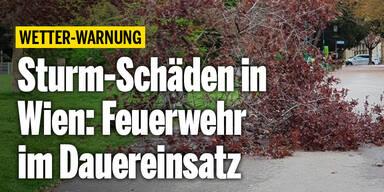 Unwetter-Warnung_vorlage.jpg