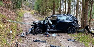 Auto bei Crash gepfählt: Lenker floh zu Mutter