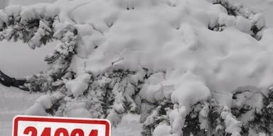 Winter-17.1.-(9).jpg