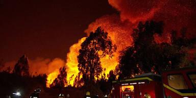 afp_evakuierung.jpg