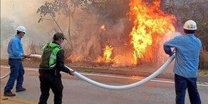 Bolsonaro will mit Militär gegen Amazonas-Feuer kämpfen