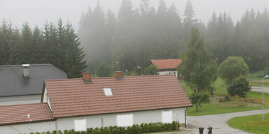 baernkopf_waldviertel.jpg