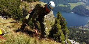 Waldbrand: Bergsteiger verhindern Schlimmeres