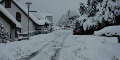 bergstrasse.jpg