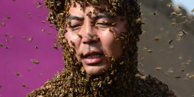 Welt-Rekord: Zhang Wei lässt 200.000 Bienen an seinen Körper