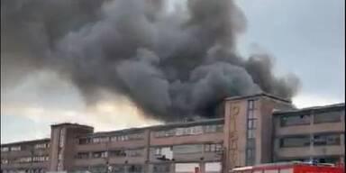 Großbrand: Fabrik in Traiskirchen steht in Flammen