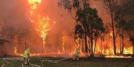 Heftiges Buschfeuer bedroht Sydney