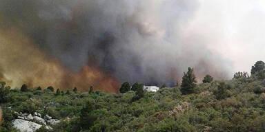 buschbrände.jpg