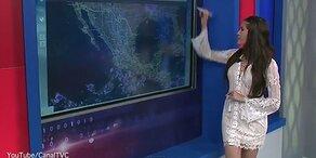 TV-Wetterfee im Transparent-Look