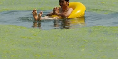 Dieser Mann lässt sich auch von einer Algen-Plage nicht vom Baden abhalten