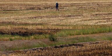 Dürre Thailand