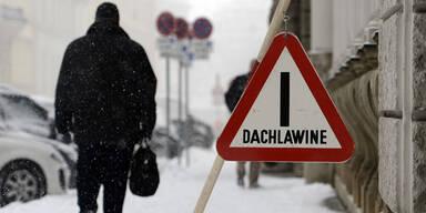 dachlawine_apa.jpg