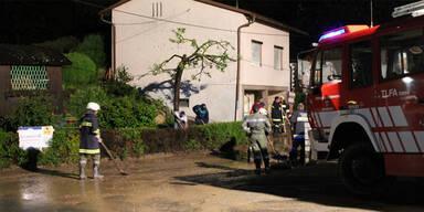 diersbach-3.jpg