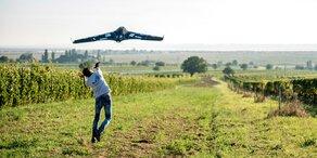 Drohne vertreibt Stare aus Weingärten
