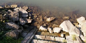 Irres Wetter! Dürre-Alarm in Österreich