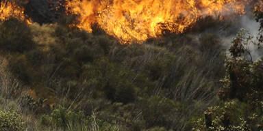 Buschbrände in Kalifornien