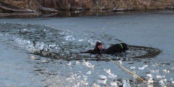 Dramatische Hunderettung vor Eis-Tod