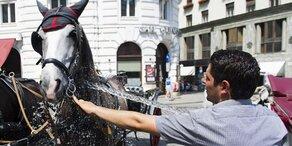 Wiens Fiaker-Pferde bekommen hitzefrei