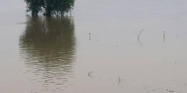 fischenfluten.jpg