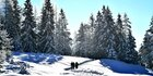 Wetter heute: Frost und Sonne - what else?