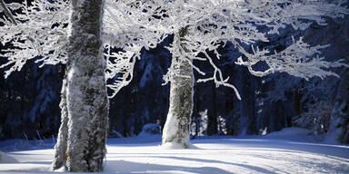 frost400.jpg