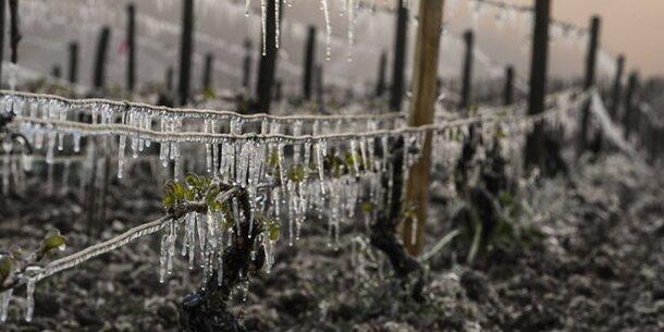 Warm anziehen: Dienstag bringt Frost