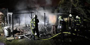 """Hündin """"Nala"""" verhinderte fatalen Wohnhausbrand"""