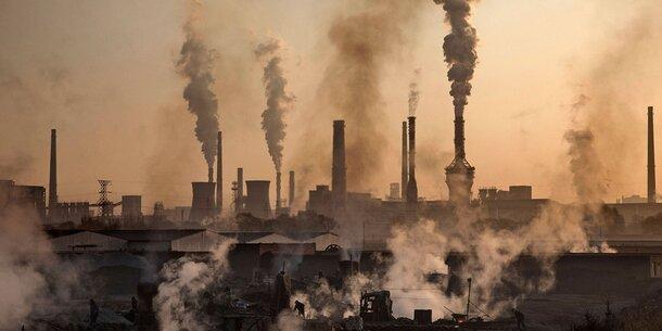 """11.000 Forscher warnen vor """"Klima-Notfall"""""""