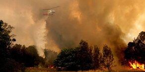 Buschfeuer: Lösch-Heli bei Einsatz verunglückt