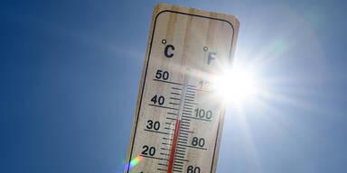 Erster Einsatz für Hitze-Warntool in NÖ